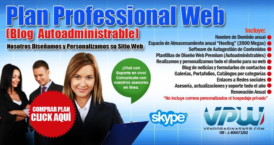 plan-profesional-web